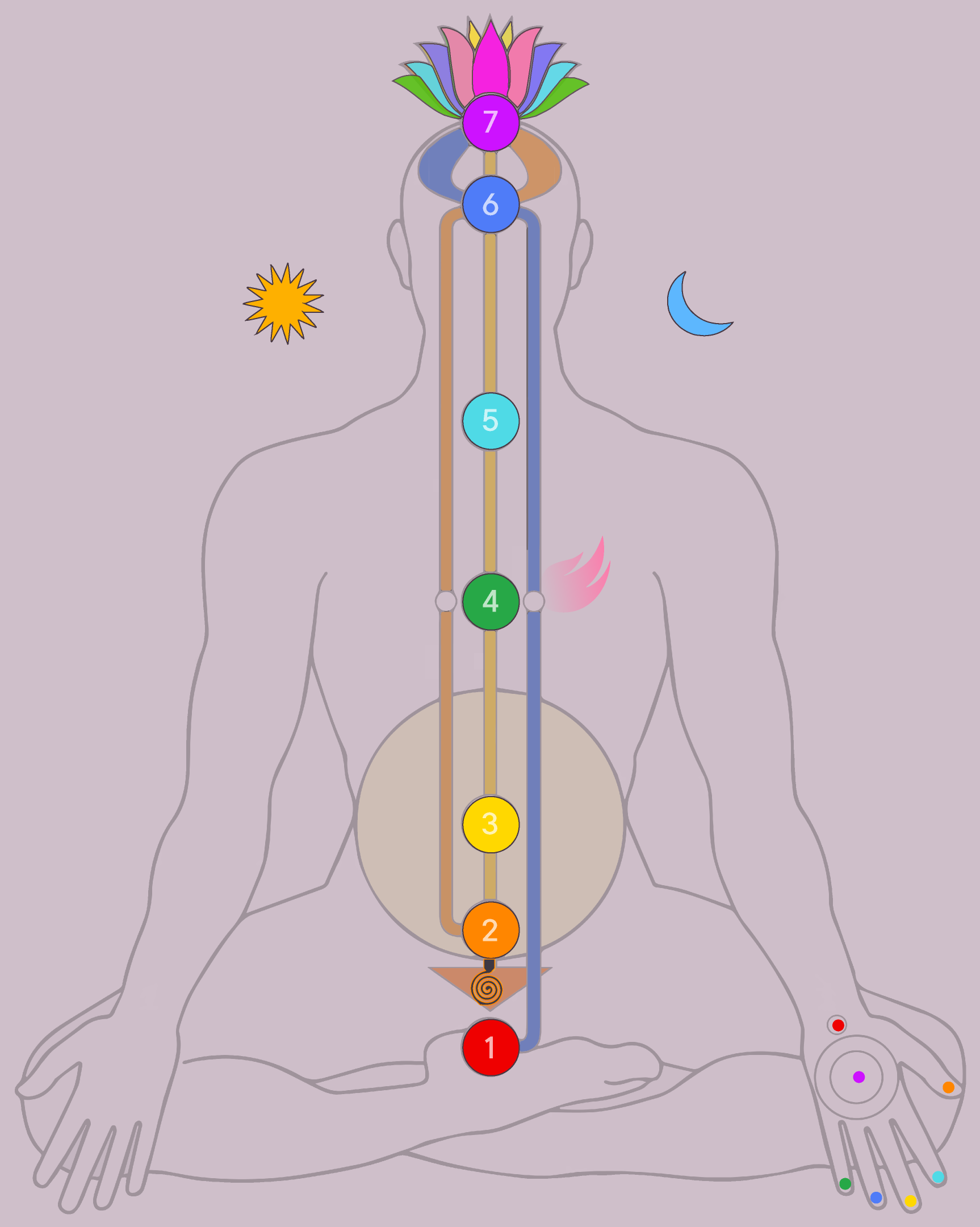 Science of Chakras and Elements